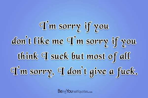 I\'m sorry if you don\'t like me I\'m sorry - Being Yourself Quotes